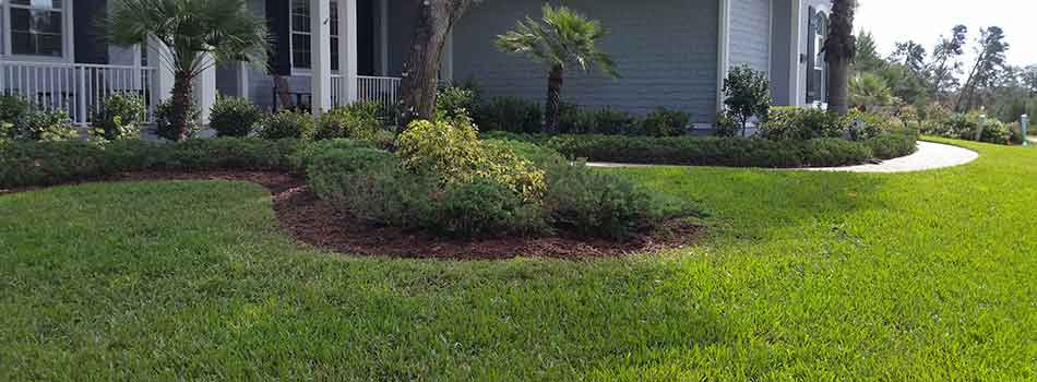 This %%targetearea1%%, FL homeowner has a well maintained lawn and manicured landscaping courtesy of TLB Landscaping.
