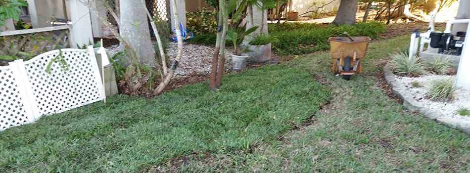 Sod has been placed on part of the yard of this Spring Hill, FL property.