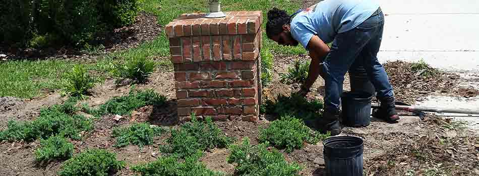 Team member installing small plants into the landscape bed of a residential customer in Brooksville, FL.